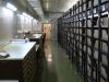 Abb. 18a: Aufbewahrungsraum für Historische Herbare im Botanischen Museum Berlin-Dahlem. Hier befindet sich auch das Herbar von C.L. Willdenow.