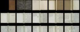 Online-Digitalisate der Amerikanischen Reisetagebücher, Projektseite der Staatsbibliothek zu Berlin-PK